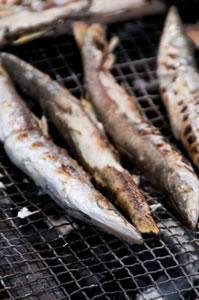 barbecue05